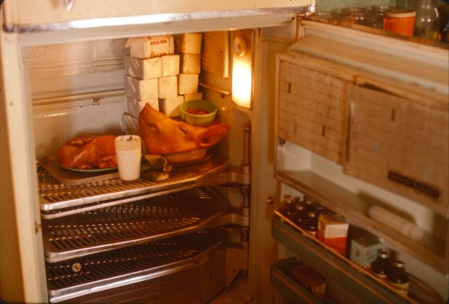 Pig head in Hortencia's fridge
