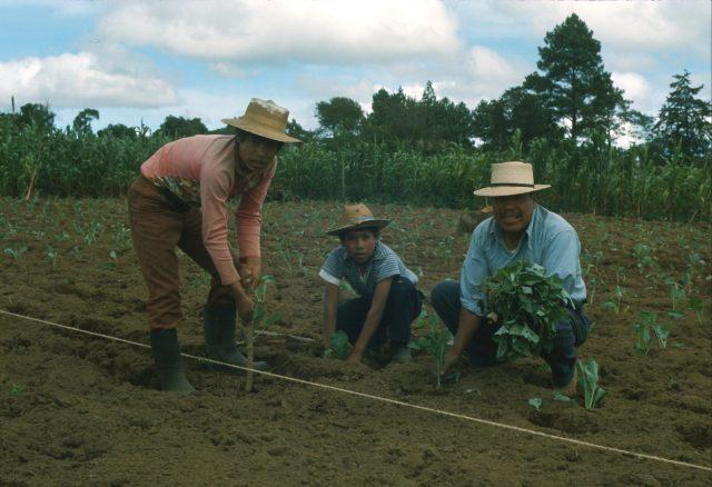 Luis Alonzo family 1977