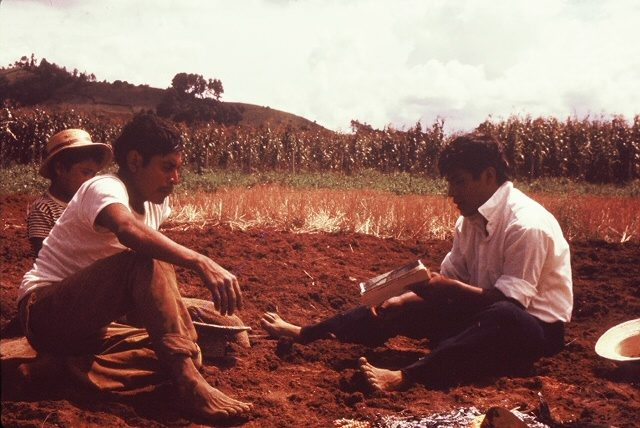 Elder Choc teaching a man and his son in the fields of Comalapa, Guatemala (High resolution photo)